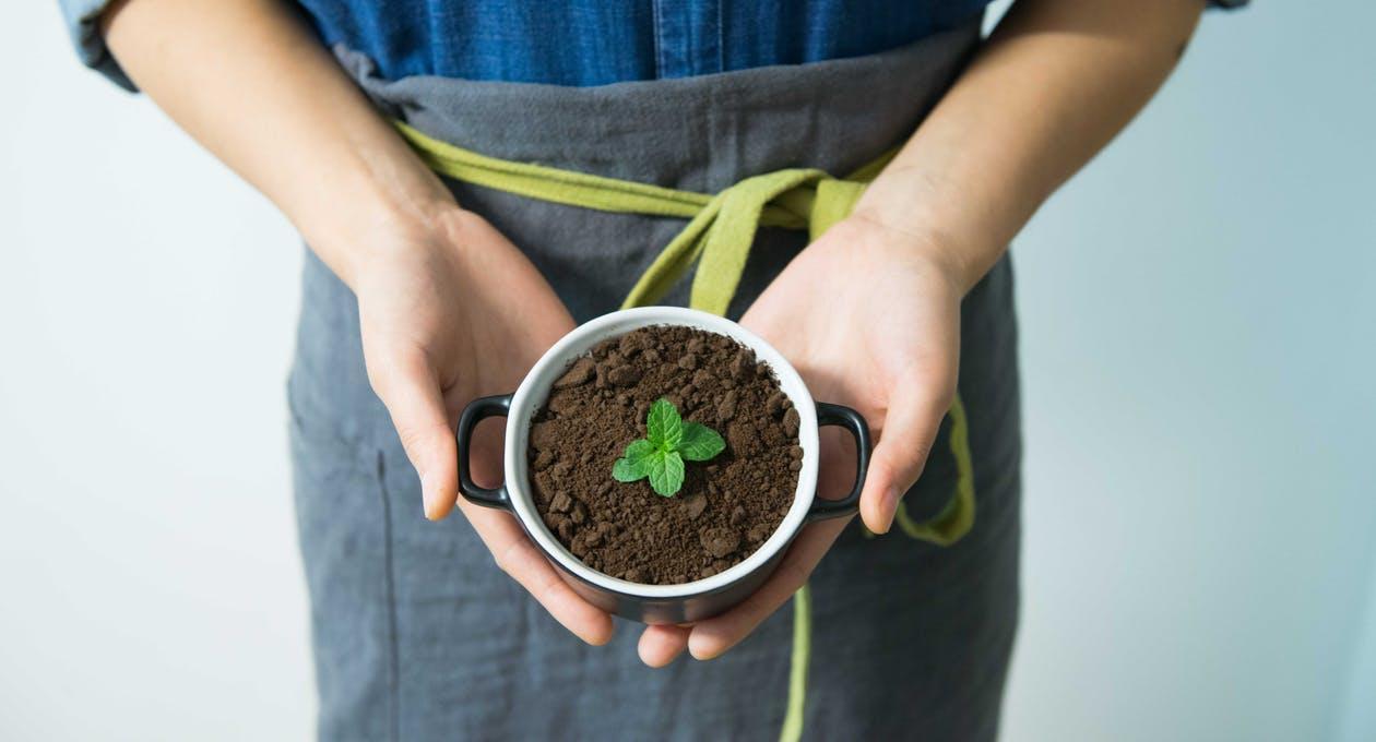 Kaip tapti ekologiškesniu?